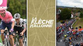 La Fleche Wallonne Logo and Cyclists